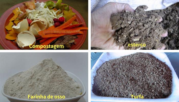 tipos de adubo orgânico