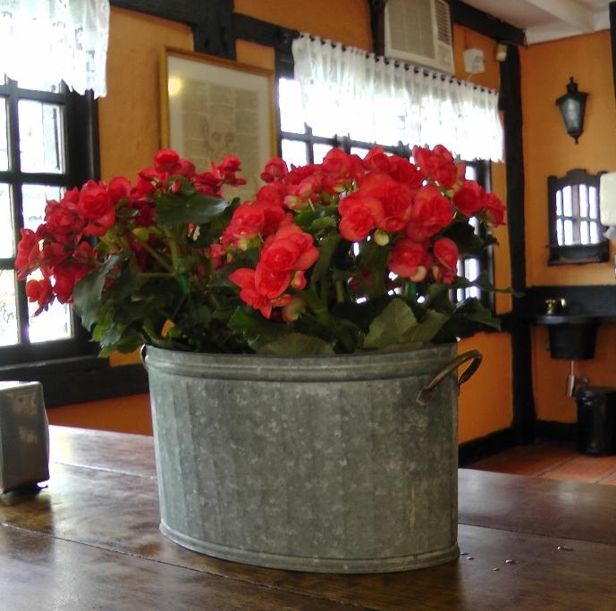 vaso de lata com flor vermelha estilo rústico