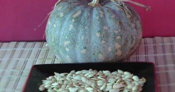 retirar e lavar semente de abóbora