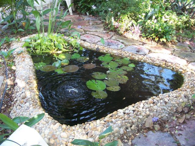 laguinho de jardim