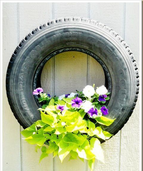 pneu velho maravilhoso com sua planta