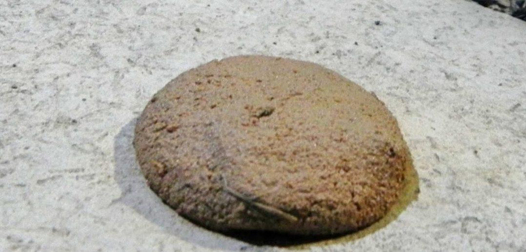bolinha de barro aplastada no chão