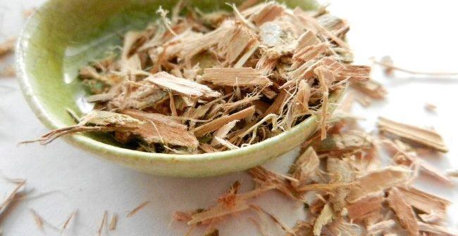 extrato de salgueiro para crescimento das raizes na plantas