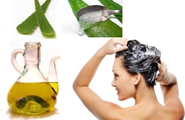 ingredientes para fazer uma mascara de cabelo co aloe vera