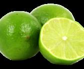 Limão – Como e Onde Plantar