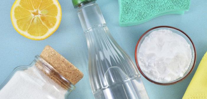 produtos de limpeza natural