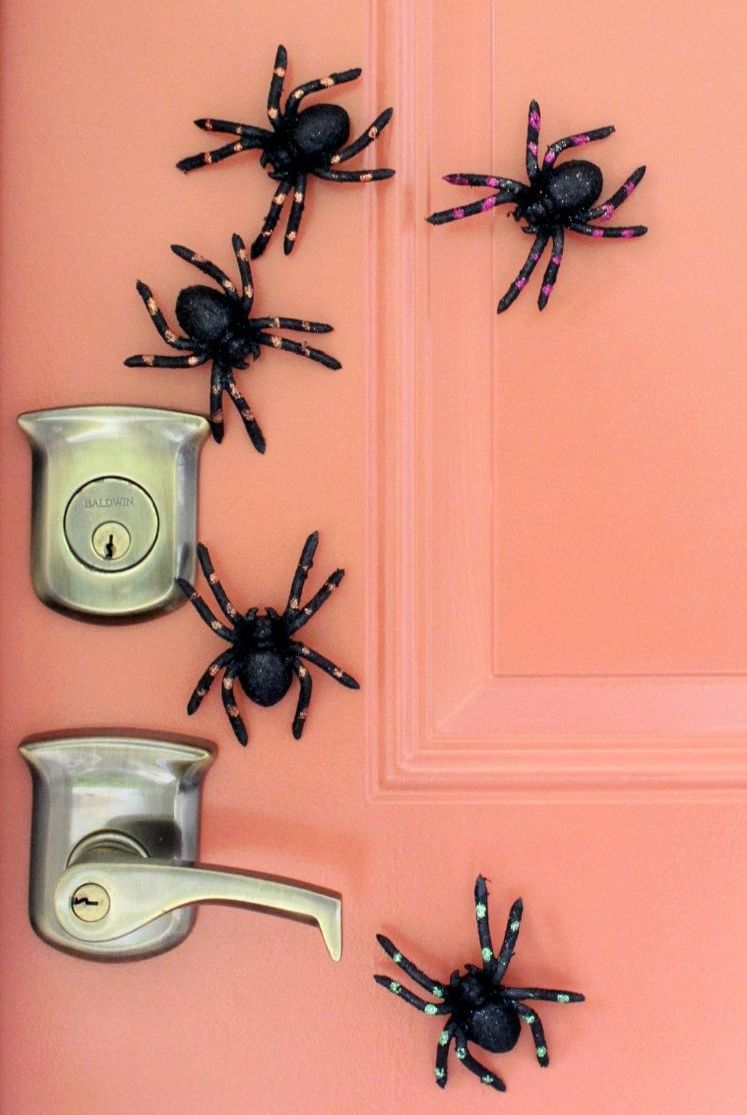 aranhas de plastico magnetica espalhadas na porta