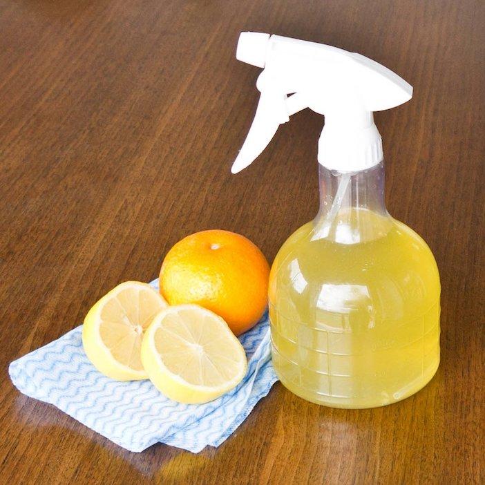 garrafa spray com liquido repelente de formigas