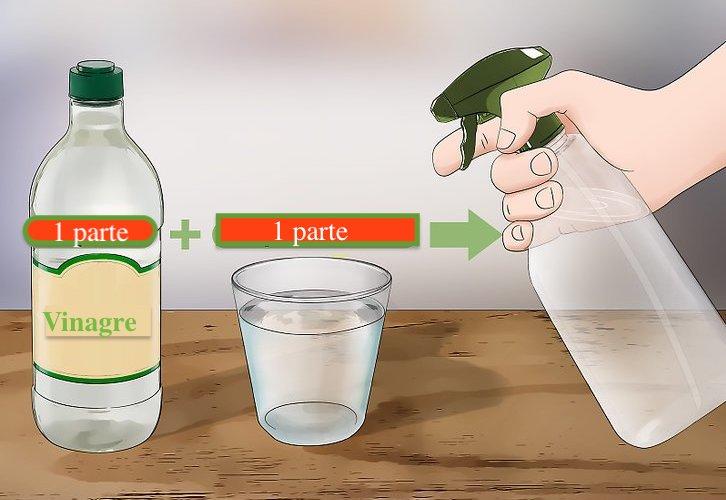 vinagre mais água igual a spray matar formiga