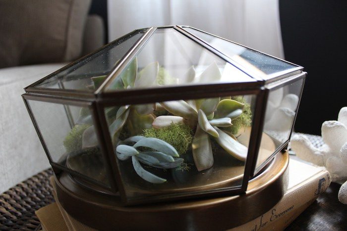 luminaria em forma losango com varias plantas suculentas dentro