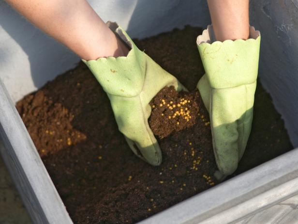 colocando terra no vaso