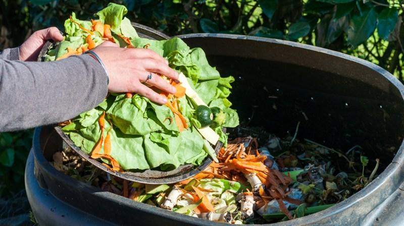 Resultado de imagem para compostagem