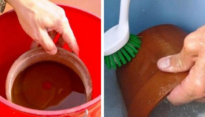 submergindo e esfregando pot de barro