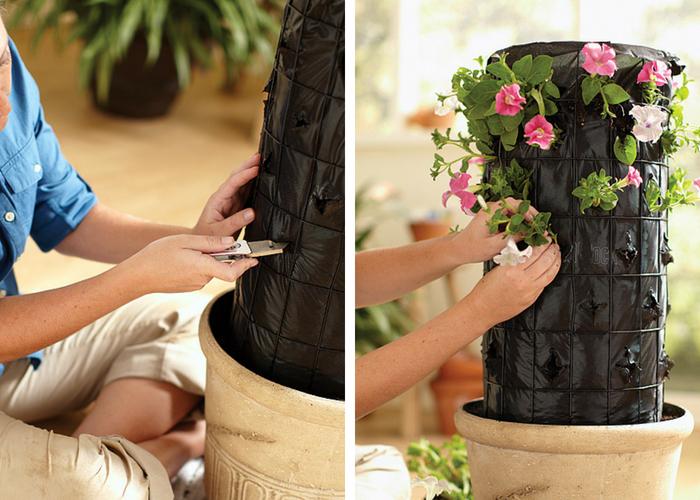 fazendo fissura na torre e plantando as mudas
