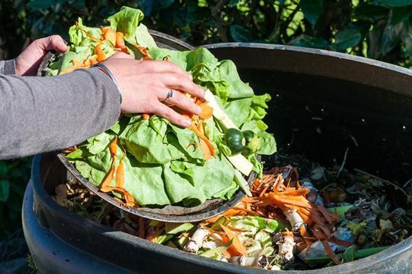 jogando resto de vegetais no lixo