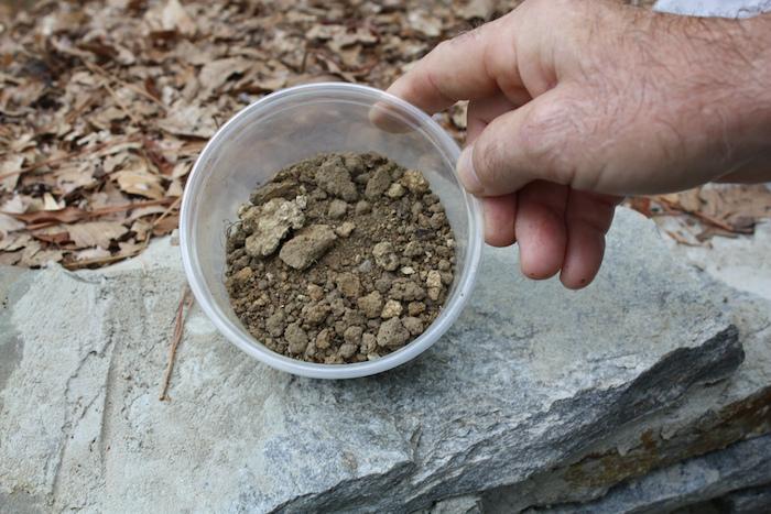 solo calcário