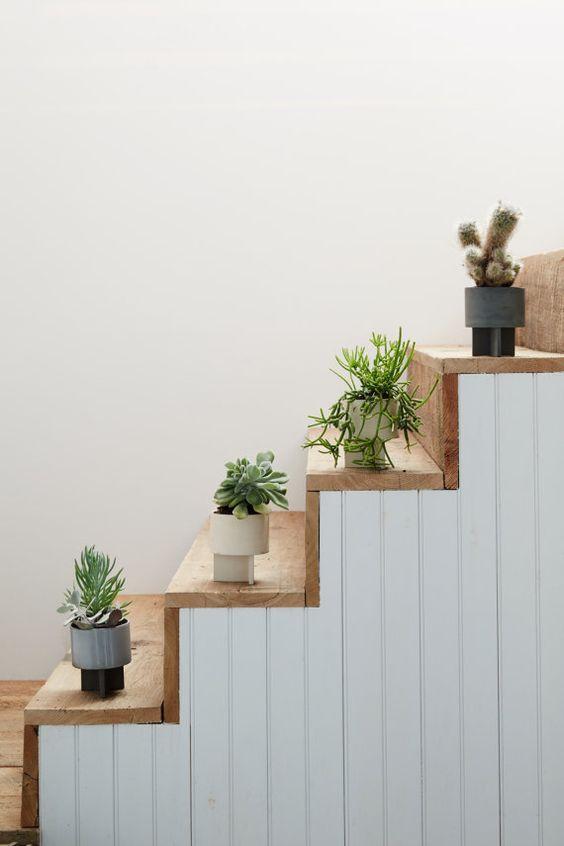 plantas decorando nos degraus da escada