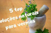 solução natural para vermes no intestino