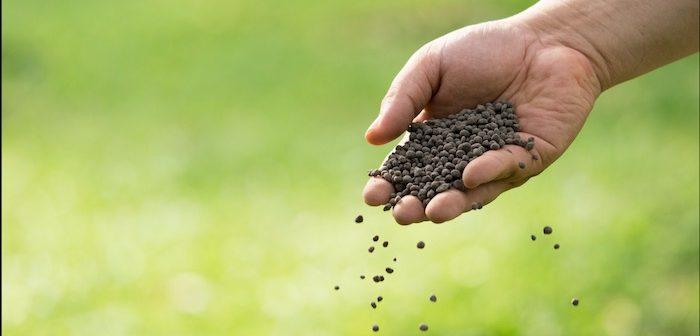 fertilizante nitrogênio caseiro