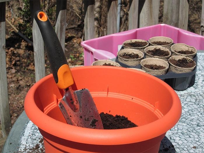 plantando ervas