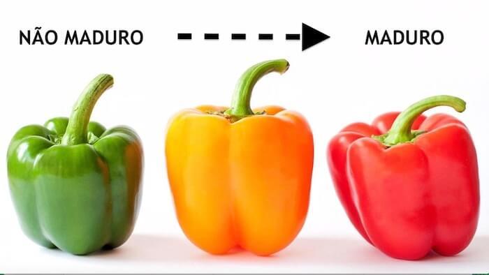 pimentão verde amarelo vermelho