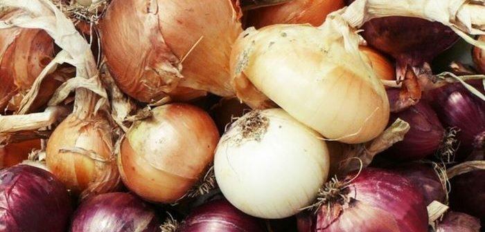 Qual cebola é a mais saudável ?