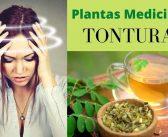 Remédios naturais para vertigens e tonturas com plantas medicinais